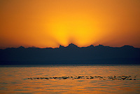 Sunset over Semiahoo Bay and Ducks in Pacific Ocean, White Rock, BC, British Columbia, Canada