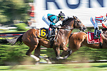 09042021:The start of the Saranac S. (gr 3) on The JOCKEY GOLD CUP day at Saratoga<br /> Robert Simmons/Eclipse Sportswire