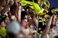 15th March 2020, Wellington, New Zealand;  Phoenix fans during the A-League - Wellington Phoenix versus Melbourne Victory football match at Sky Stadium in Wellington on Sunday the 15th March 2020.