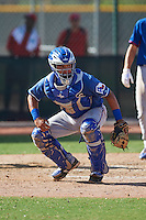 Texas Rangers Jose Trevino (71) during an instructional league game against the Los Angeles Angels / Chicago Cubs co-op team on October 5, 2015 at the Surprise Stadium Training Complex in Surprise, Arizona.  (Mike Janes/Four Seam Images)