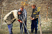 Black Mountains, Czech Republic. Foresters in the Prirodni Reserve.
