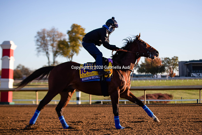 November 4, 2020: Maximum Security, trained by trainer Bob Baffert, exercises in preparation for the Breeders' Cup Classic at Keeneland Racetrack in Lexington, Kentucky on November 4, 2020. Gabriella Audi/Eclipse Sportswire/Breeder's Cup/CSM