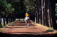 Equestrian riding horse on trail.