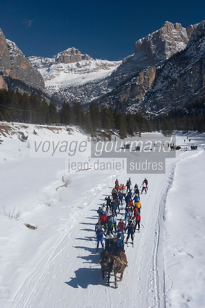 Europe/Italie/Trentin Haut-Adige/Dolomites/Alta Badia/ San Cassiano:  le remonte pente traditionnel a du succés,quand le traineau à cheval remplace les  remontées mécaniques