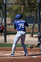 Niko Husizer - Los Angeles Dodgers 2019 spring training (Bill Mitchell)
