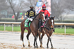 February 27, 2021: #5, Santa Cruiser in the post parade of the Southwest Stakes (Grade 3) at Oaklawn Park in Hot Springs, Arkansas. Ted McClenning/Eclipse Sportswire/CSM