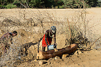 KENYA Marsabit, Rendile pastoral tribe, village Ngurunit, cattle holder dig water holes in dry river bed of river Ngurunit / KENIA, Marsabit, Dorf Ngurunit, Rendile Hirten graben Wasserloecher im trockenen Flussbett des Fluss Ngurunit