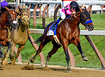 SARATOGA SPRINGS, NY - AUGUST 26: West Coast #3 (black cp), with Mike Smith cut the corner on the turn for home en route to winning the Travers Stakes on Travers Stakes Day at Saratoga Race Course on August 26, 2017 in Saratoga Springs, New York. (Photo by Scott Serio/Eclipse Sportswire/Getty Images)