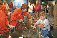 Children docent Discovery Tidepool, new California Academy of Sciences, San Francisco California