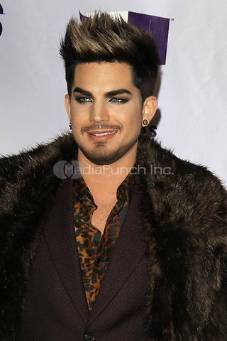 LOS ANGELES, CA - DECEMBER 16: Adam Lambert at VH1 Divas 2012 at The Shrine Auditorium on December 16, 2012 in Los Angeles, California. Credit: mpi21/MediaPunch Inc.
