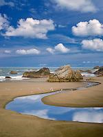 Harris Creek and ocean with seagulls. Harris Beach State Park, Oregon