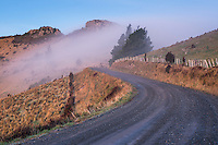 Gravel road on Banks Peninsula at dusk, Canterbury, South Island, New Zealand