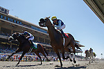 AUG 30,2014:Blue Tone,ridden by Kent Desormeaux(yellow cap),wins the Harry F. Brubaker Stakes at Del Mar in Del Mar,CA. Kazushi Ishida/ESW/CSM
