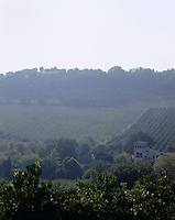 The house has an impressive and romantic view of the vineyards and rolling hills that surround it