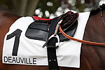 August 15, 2021, Deauville (France) - Saddle cloth for #1 for races in Deauville at the Deauville Racecourse. [Copyright (c) Sandra Scherning/Eclipse Sportswire)]