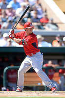 St. Louis Cardinals outfielder Randal Grichuk (88) during a spring training game against the Detroit Tigers on March 3, 2014 at Joker Marchant Stadium in Lakeland, Florida.  Detroit defeated St. Louis 8-5.  (Mike Janes/Four Seam Images)