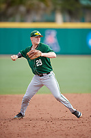 Dartmouth Big Green Steffen Torgersen (29) during practice before a game against the USF Bulls on March 17, 2019 at USF Baseball Stadium in Tampa, Florida.  USF defeated Dartmouth 4-1.  (Mike Janes/Four Seam Images)