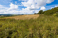 Stubble field with 6m margis- Gloucestershire, September