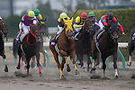 TOYOAKE,JAPAN-DECEMBER 04: Sound True #8,ridden by Takuya,Onowins the Champions Cup at Chukyo Racecourse on December 04,2016 in Toyoake,Aichi,Japan (Photo by Kaz Ishida/Eclipse Sportswire/Getty Images)