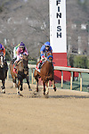 #11 Sugar Shock with jockey Channing Hill, #1 Please Explain (KY) with jockey Drayden Van Dyke & #6 Euphrosyne with jockey Ricardo Santana, Jr. aboard after crossing the finish line during the running of the Honeybee Stakes (Grade III) at Oaklawn Park in Hot Springs, Arkansas-USA on March 8, 2014. (Credit Image: © Justin Manning/Eclipse/ZUMAPRESS.com)