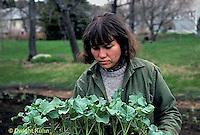 HS17-019z  Broccoli - woman planting seedlings in garden