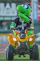 20 August 2015: Vermont Lake Monsters Mascot Champ arrives prior to a game against the Tri-City ValleyCats at Centennial Field in Burlington, Vermont. The Stedler Division-leading ValleyCats defeated the Lake Monsters 5-2 in NY Penn League action. Mandatory Credit: Ed Wolfstein Photo *** RAW Image File Available ****