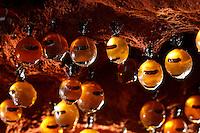 The honeypot ants' chambers can generally be found more than one meter deep. They are connected to one of the entrances to the colony by a vertical tunnel that is dug out by the worker ants in very hard earth.///Les chambres des fourmis pots de miel se trouvent généralement à plus d'un mètre de profondeur. Elles sont reliées à l'une des entrées de la colonie par un tunnel vertical qui est creusé par les ouvrières dans un sol très dur.