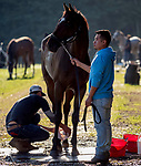 September 7, 2021: Scenes from the Eclipse Sportswire Photo Workshop at Kentucky Downs in Franklin, Kentucky, photo by Lara Hartman-Poirrier/Eclipse Sportswire Photo Workshop