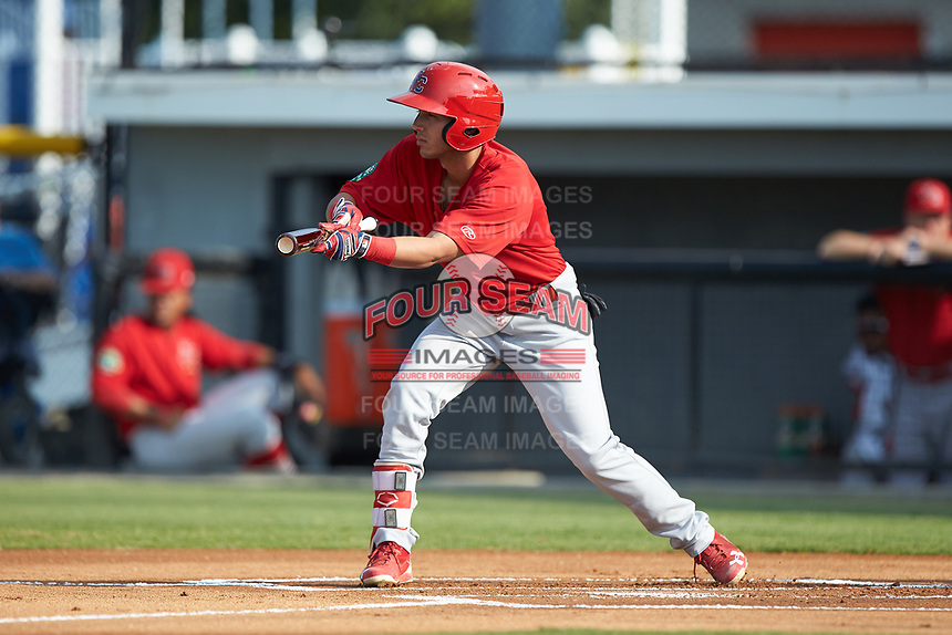 Jonatan Machado (51) of the Johnson City Cardinals squares to bunt against the Burlington Royals at Burlington Athletic Stadium on July 15, 2018 in Burlington, North Carolina. The Cardinals defeated the Royals 7-6.  (Brian Westerholt/Four Seam Images)
