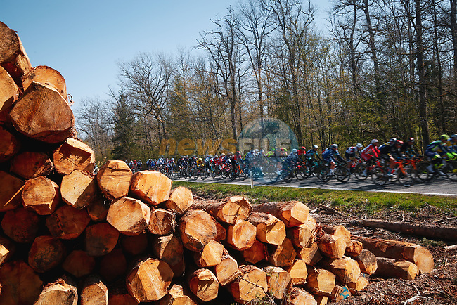 The peloton during the 107th edition of Liege-Bastogne-Liege 2021, running 259.1km from Liege to Liege, Belgium. 25th April 2021.  <br /> Picture: A.S.O./Aurelien Vialatte | Cyclefile<br /> <br /> All photos usage must carry mandatory copyright credit (© Cyclefile | A.S.O./Aurelien Vialatte)
