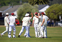 210220 Pearce Cup Cricket - Taita v Karori