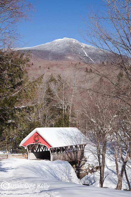 The Flume Bridge in the White Mountain National Forest, NH, USA
