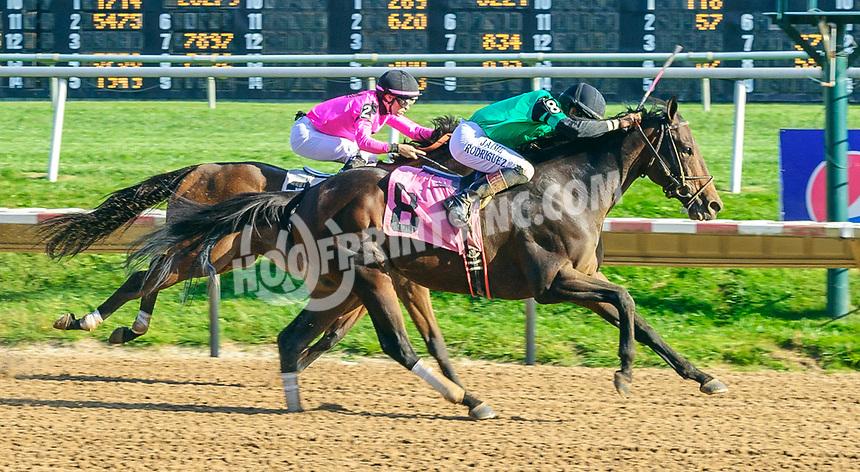 Skyscanner winning at Delaware Park on 10/2/21