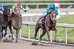 HALLANDALE BEACH, FL - FEB 3:Strike Power#6 trained by Mark A. Hennig with Luis Saez in the irons wins the $200,000 Swale Stakes (G3) at Gulfstream Park on February 3, 2018 in Hallandale Beach, Florida. (Photo by Bob Aaron/Eclipse Sportswire/Getty Images)