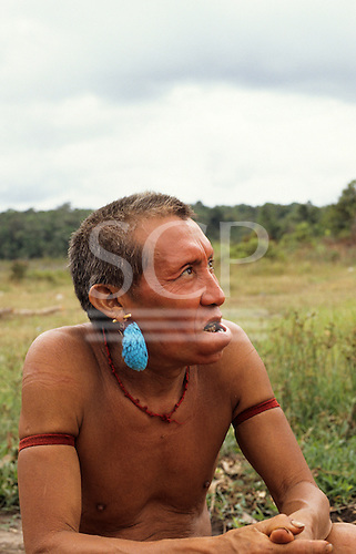 Roraima State, Brazil. Yanomami Indian man with bright turquoise blue feather earring and wad of chewing leaves in his lower lip.