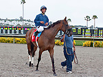 August 15, 2010.Wasted Tears, riden by Rajiv Maragh, wins the John C. Mabee Stakes, at Del Mar Thoroghbred Club, Del Mar, CA