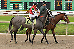 January 16, 2016: Mizz Money with Jesus Lopez Castanon up in the Marie G. Krantz Memorial Stakes race at the Fairground race course in New Orleans Louisiana. Steve Dalmado/ESW/CSM