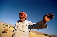 Baalbeck / Bekaa / Libano - 2006.Un pastore con il suo gregge nei pressi delle rovine dell'antica Baalbeck. La popolazione di questa zona è sciita. Ma altre parti della Valle sono abitate da gruppi Sunniti, Cristiani Maroniti e Drusi..Sullo sfondo le montagne al confine con la Siria..Foto Livio Senigalliesi..Baalbeck / Bekaa Valley / Lenabon - 2006.Lebanese shepard along the road throgh Bakaa Valley..The population of this area is shia. The western and southern districts of the valley have a mixed population of Muslim, Christian, and Druze Lebanese..In the background the mountains and the border with Syria..Photo Livio Senigalliesi