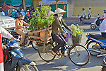 Woman On Bicycle With Plants