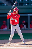 Catcher Brent Todys (12) of the Ohio State Buckeyes bats in a game against the Illinois Fighting Illini on Friday, March 5, 2021, at Fluor Field at the West End in Greenville, South Carolina. (Tom Priddy/Four Seam Images)