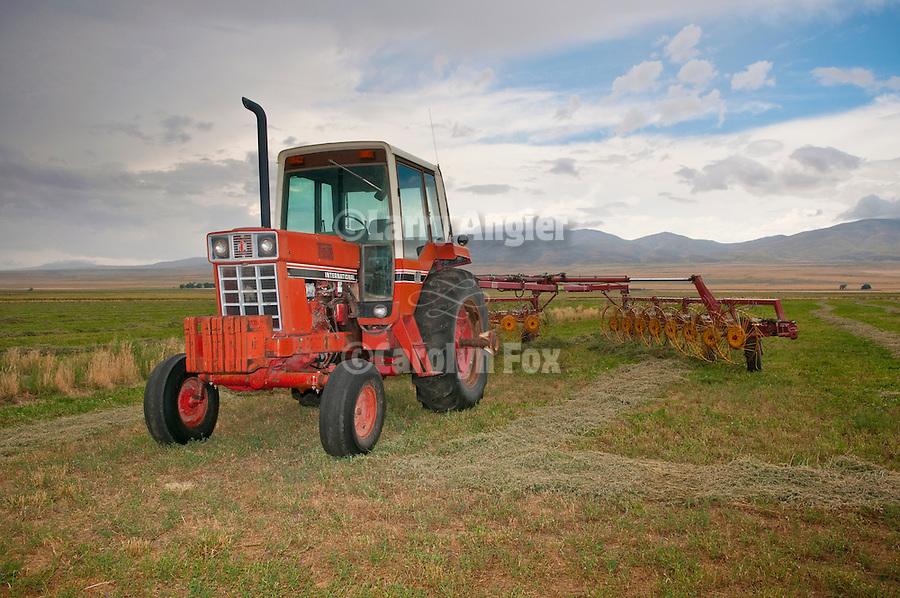 1970s International Farmall tractor with rakewheel, Blue Creek Valley