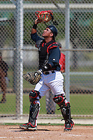 Minnesota Twins minor league catcher Jhonatan Arias during a game vs. the Boston Red Sox in an Instructional League game at Lee County Sports Complex in Fort Myers, Florida;  October 1, 2010.  Photo By Mike Janes/Four Seam Images