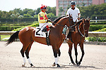 Loch Dubh on post parade for the running of the Bob Umphrey Turf Sprint Stakes, Calder Race Course, Miami Gardens Florida. 07-07-2012.  Arron Haggart/Eclipse Sportswire.