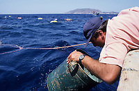 ITALY, Sicily, Egedian island Favignana, La Mattanza, traditional fishing of bluefin Tuna fish, watching for the Tuna