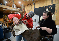 """Justin Clark (left), owner of Red Arrow Taxidermy, and associate Ashley Metheny Smith work together Wednesday, Jan. 6, 2021, to prepare a deer mount for a customer in Clark's workshop in Hogeye. Clark, a retired Fayetteville firefighter, has a thriving business that he began in his garage several years ago. """"It's never not deer season for me,"""" Clark said. Visit nwaonline.com/210107Daily/ for today's photo gallery. <br /> (NWA Democrat-Gazette/Andy Shupe)"""