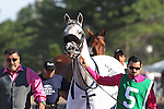 August 2, 2015. Mr. Jordan, trained by Edward Plesa, leads the walkover to the paddock before the Grade I William Hill Haskell Invitational Stakes, one and 1/8 miles on the dirt  for three year olds at Monmouth Park in Oceanport, NJ.  Joan Fairman Kanes/ESW/CSM