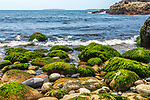 Hunters Beach in Acadia National Park, Maine, USA