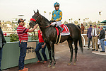 ARCADIA, CA  JANUARY 4:  #1 Desert Stone, ridden by Geovanni Franco in the winners circle after winning the San Gabriel Stakes (Grade ll) on January 4, 2020 at Santa Anita Park in Arcadia, CA.  (Photo by Casey Phillips/Eclipse Sportswire/CSM)