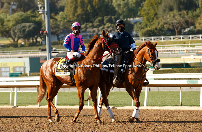 ARCADIA, CA  MARCH 6: #6 Brickyard Ride, ridden by Alexis Centeno, in the post parade of the San Carlos Stakes (Grade ll) on March 6, 2021 at Santa Anita Park in Arcadia, CA.  (Photo by Casey Phillips/EclipseSportswire/CSM)