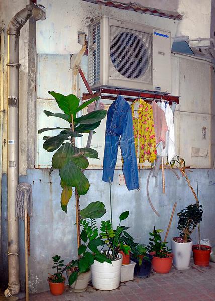 Hongkong, China, Asien, urbane Flora<br />  ***Keine Social_Media Nutzung***<br /> <br /> Engl.: Asia, China, Hong Kong, urban flora, plant, flower pots<br /> ***No social media use***